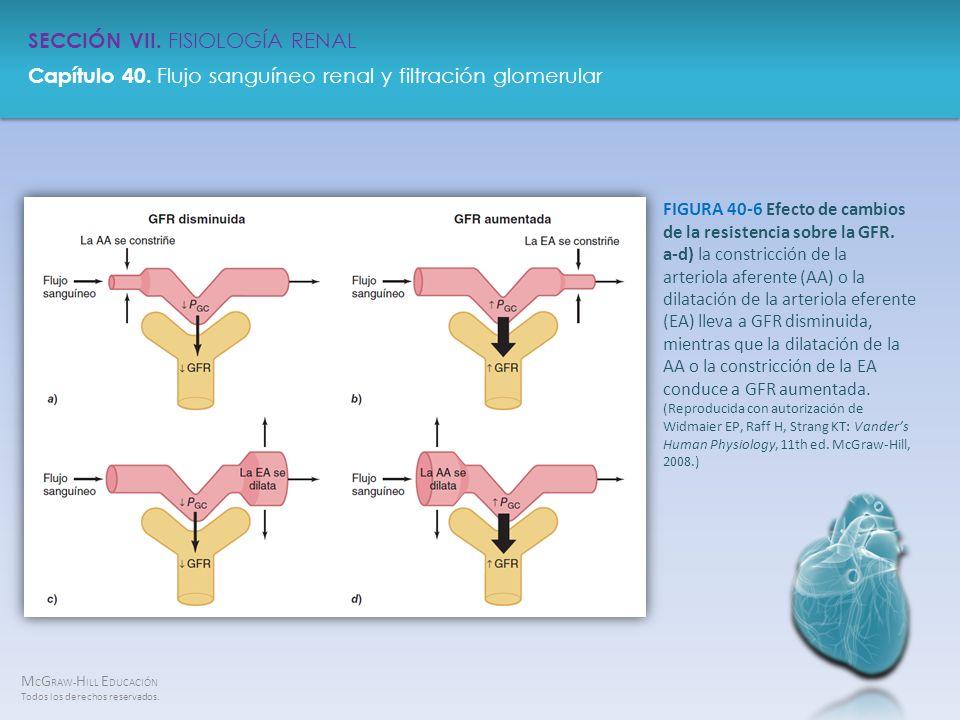 FIGURA 40-6 Efecto de cambios de la resistencia sobre la GFR