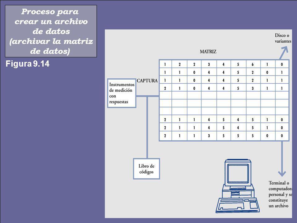 Proceso para crear un archivo de datos (archivar la matriz de datos) Figura 9.14
