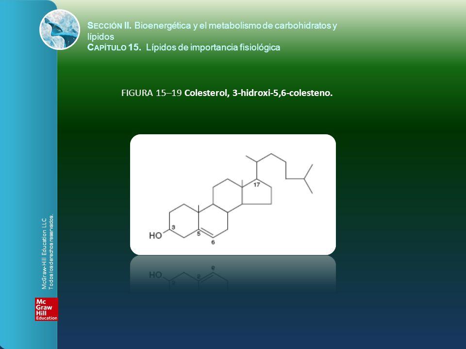 FIGURA 15–19 Colesterol, 3-hidroxi-5,6-colesteno.
