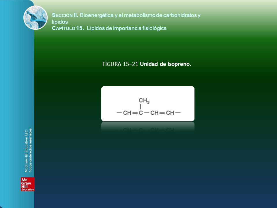 FIGURA 15–21 Unidad de isopreno.