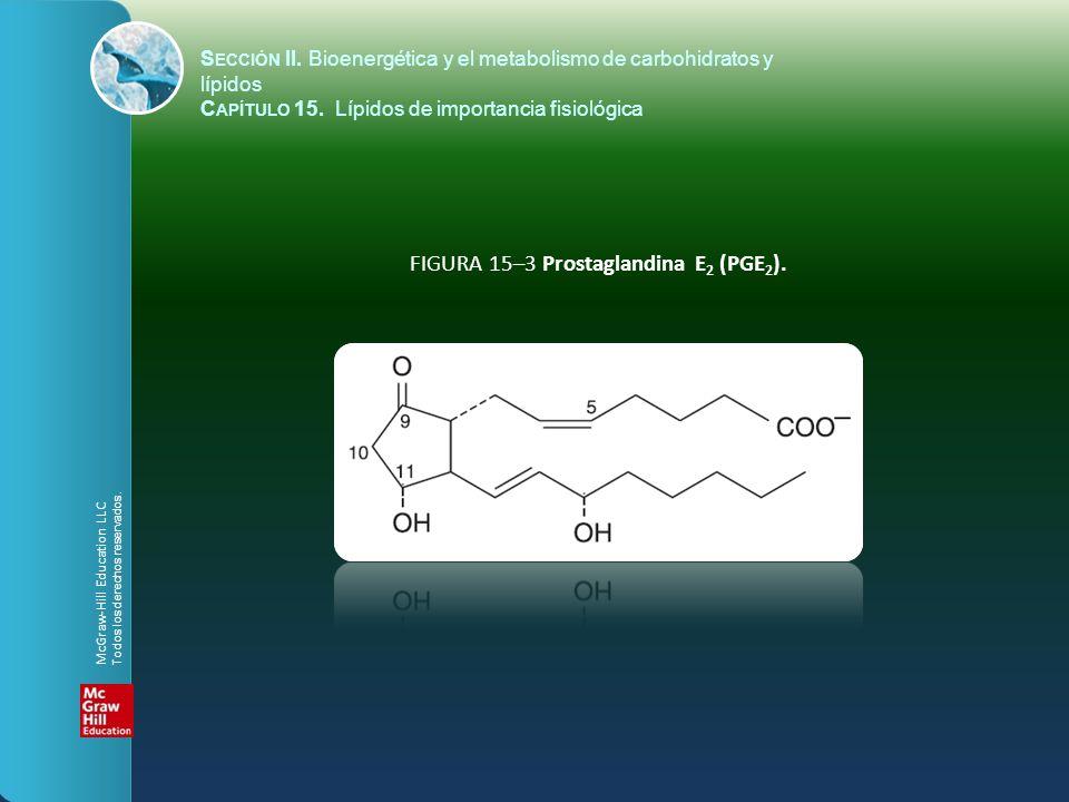 FIGURA 15–3 Prostaglandina E2 (PGE2).