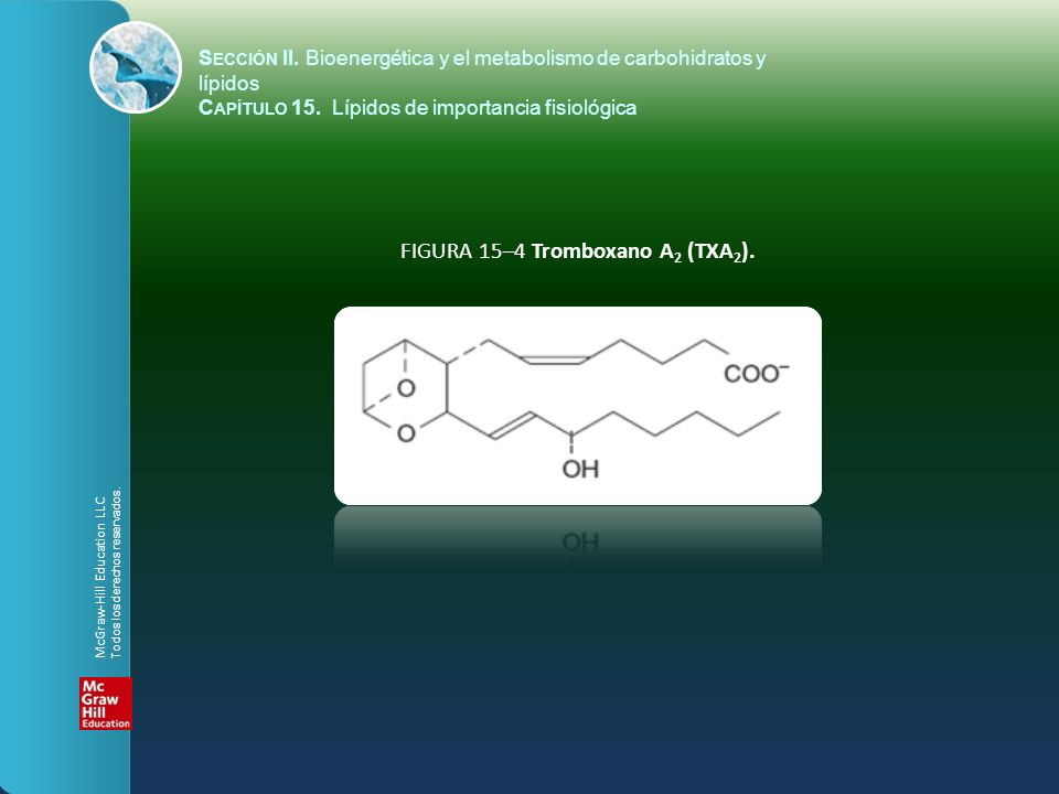 FIGURA 15–4 Tromboxano A2 (TXA2).