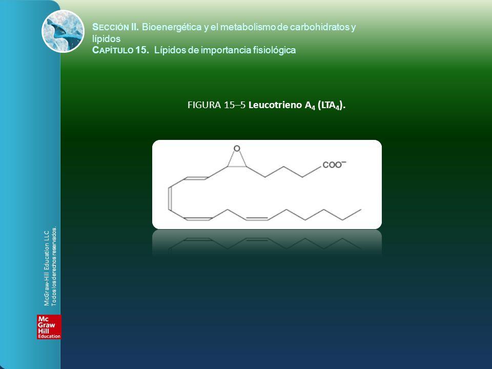 FIGURA 15–5 Leucotrieno A4 (LTA4).