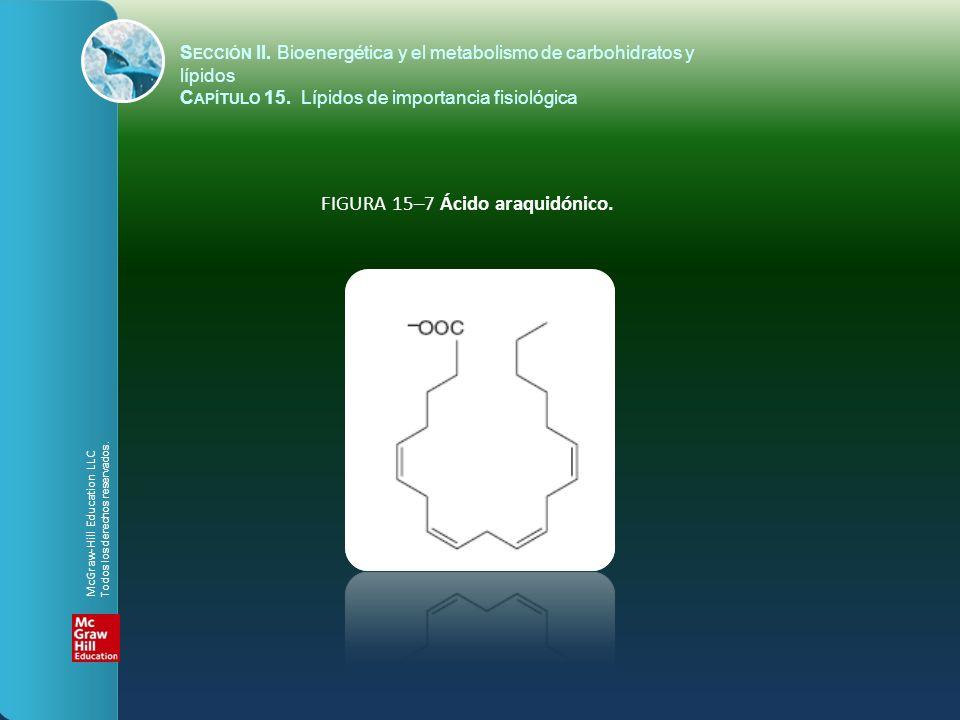 FIGURA 15–7 Ácido araquidónico.
