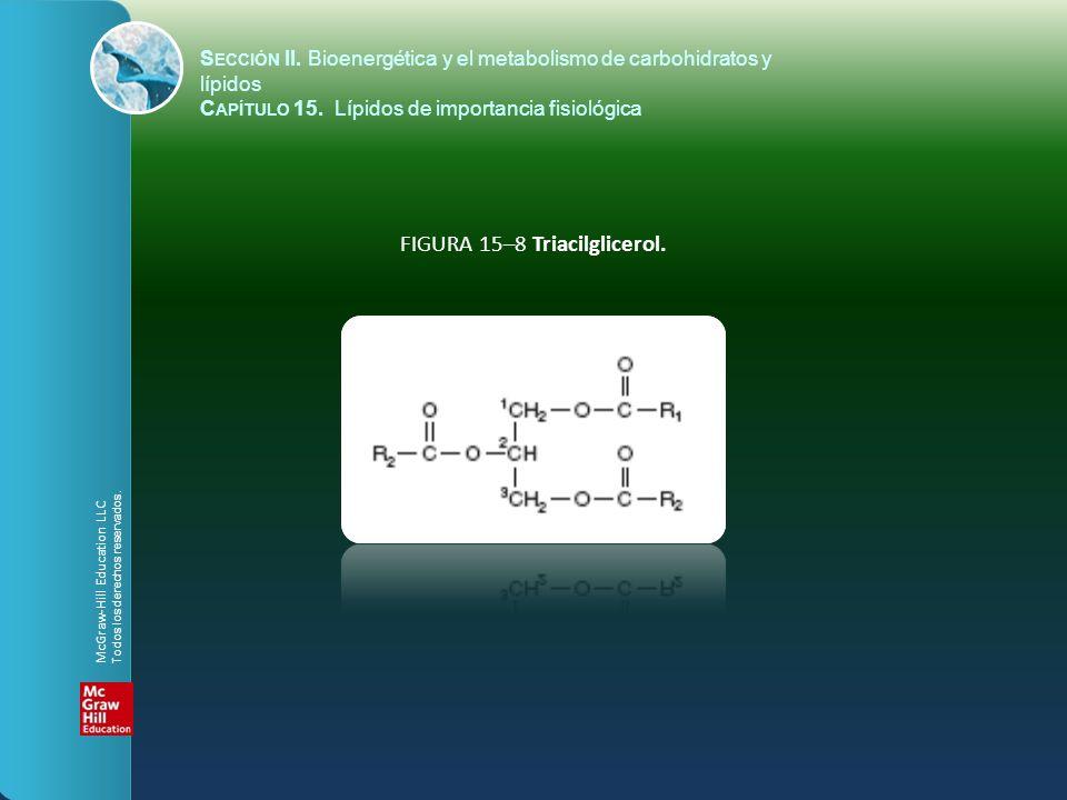 FIGURA 15–8 Triacilglicerol.