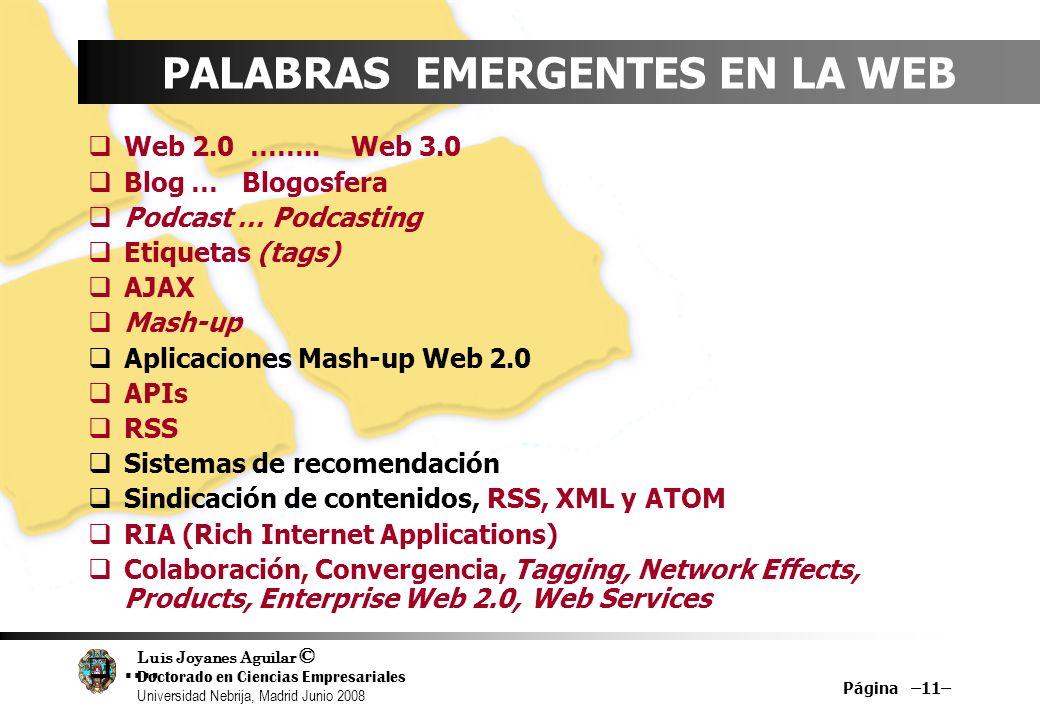 PALABRAS EMERGENTES EN LA WEB
