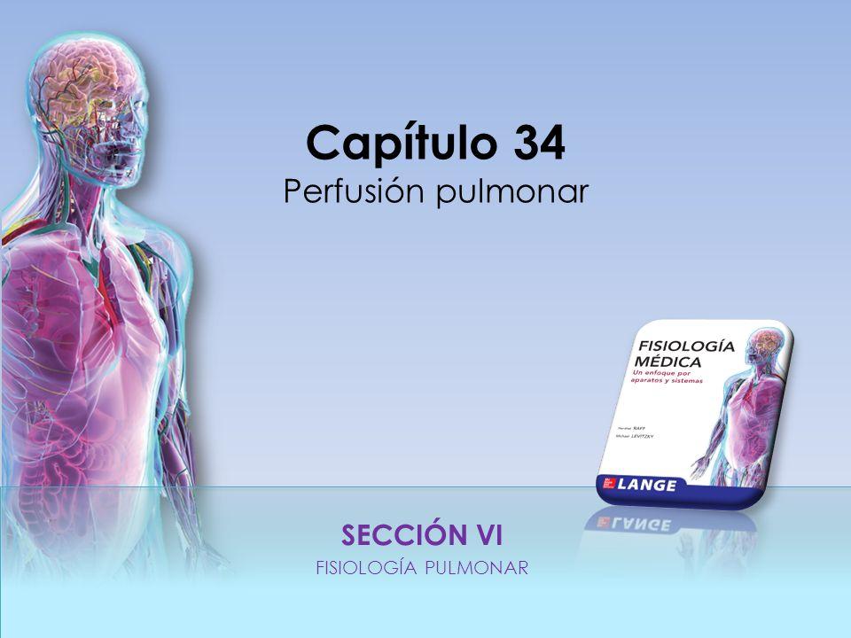 SECCIÓN VI FISIOLOGÍA PULMONAR