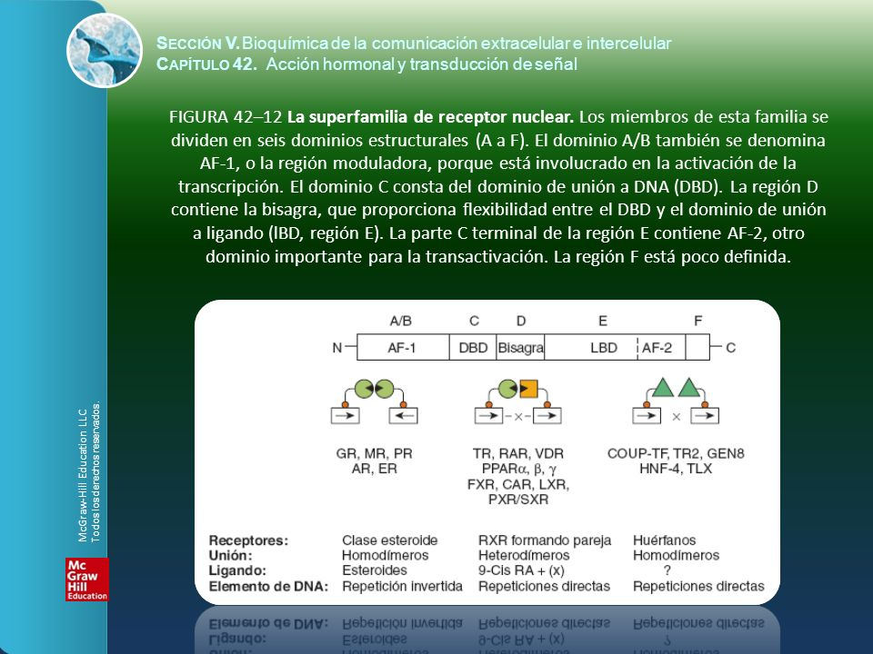Sección V. Bioquímica de la comunicación extracelular e intercelular