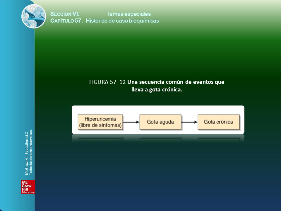 FIGURA 57–12 Una secuencia común de eventos que lleva a gota crónica.