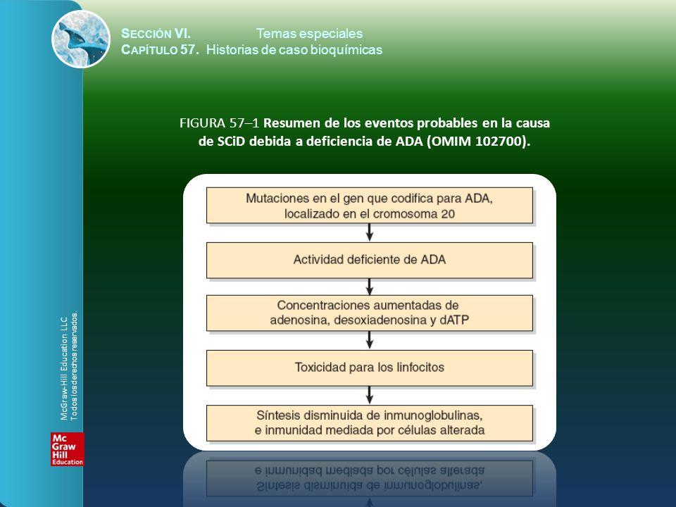 de SCiD debida a deficiencia de ADA (OMIM 102700).