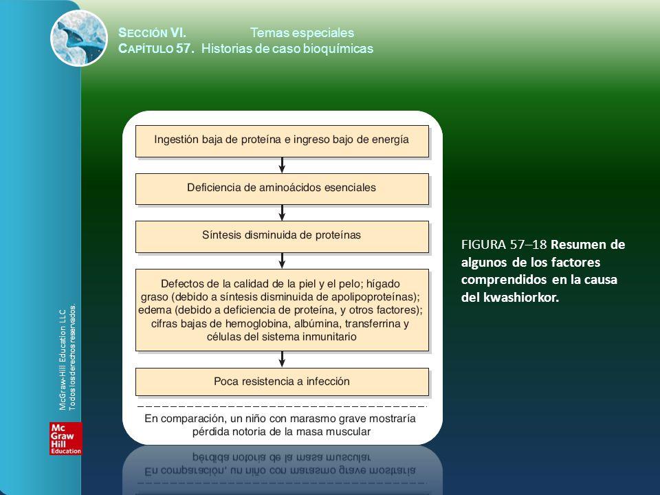 FIGURA 57–18 Resumen de algunos de los factores