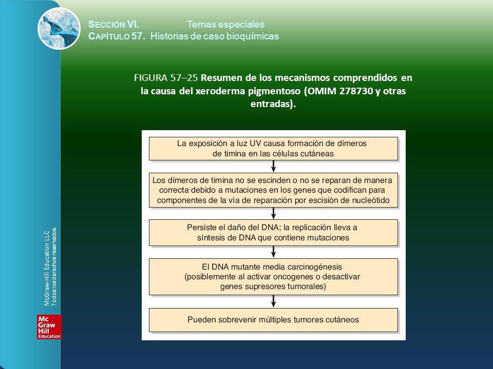 la causa del xeroderma pigmentoso (OMIM 278730 y otras