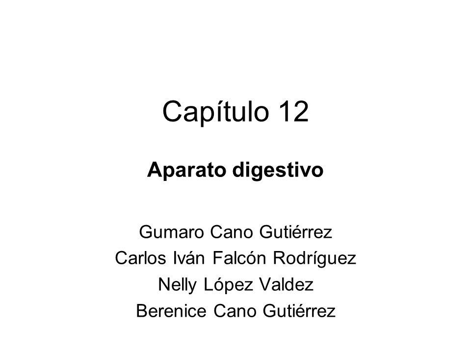 Capítulo 12 Aparato digestivo Gumaro Cano Gutiérrez