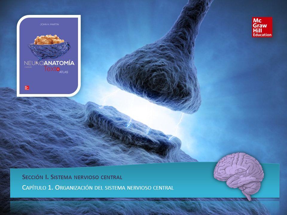 Sección I. Sistema nervioso central