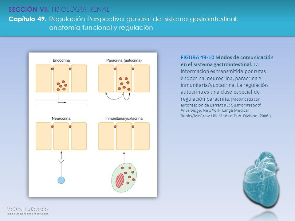 FIGURA 49-10 Modos de comunicación en el sistema gastrointestinal