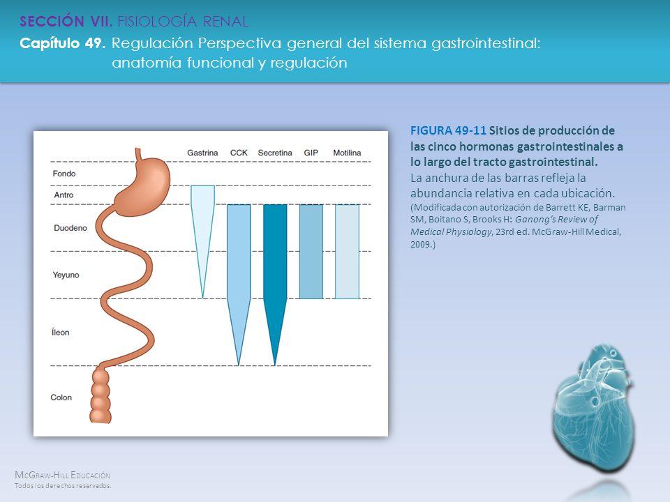 FIGURA 49-11 Sitios de producción de las cinco hormonas gastrointestinales a lo largo del tracto gastrointestinal.