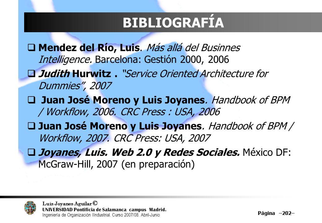 BIBLIOGRAFÍA Mendez del Río, Luis. Más allá del Businnes Intelligence. Barcelona: Gestión 2000, 2006.
