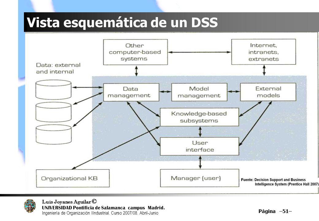 Vista esquemática de un DSS