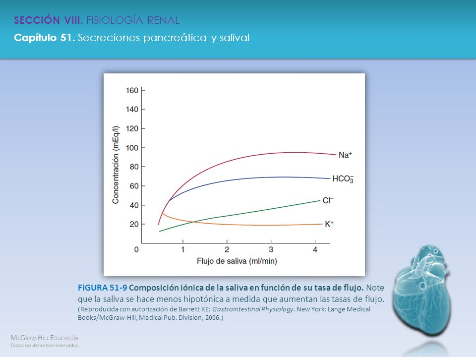 FIGURA 51-9 Composición iónica de la saliva en función de su tasa de flujo.