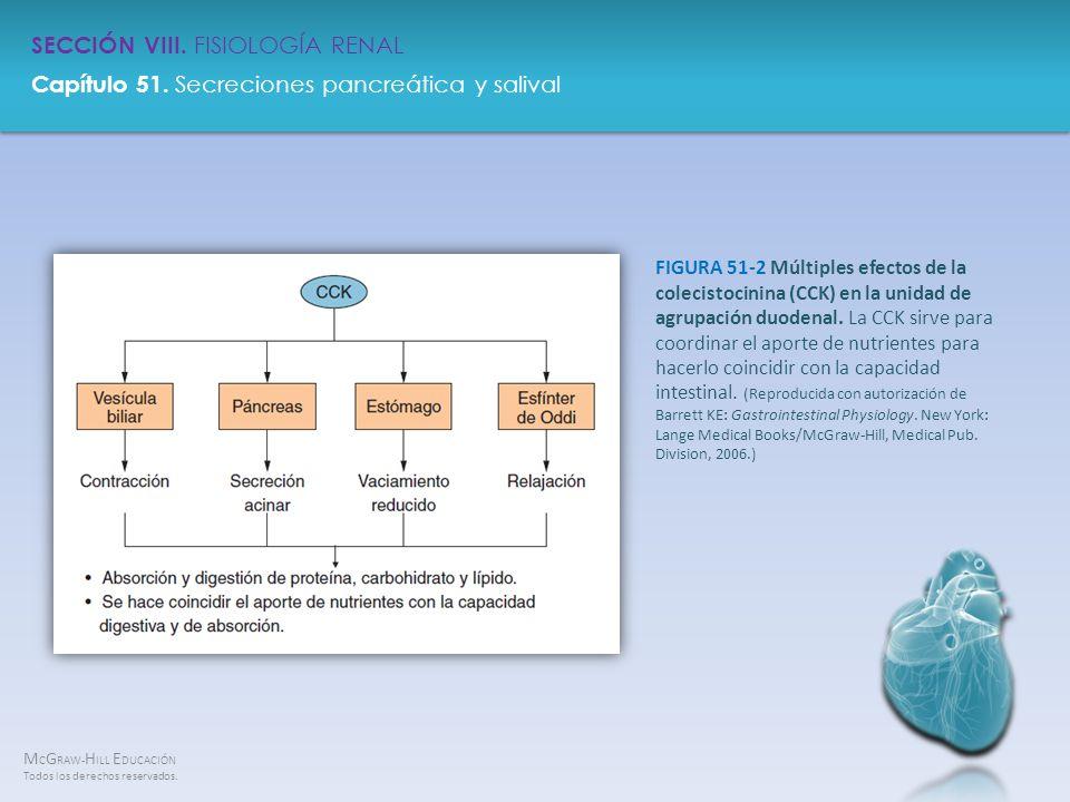 FIGURA 51-2 Múltiples efectos de la colecistocinina (CCK) en la unidad de agrupación duodenal.