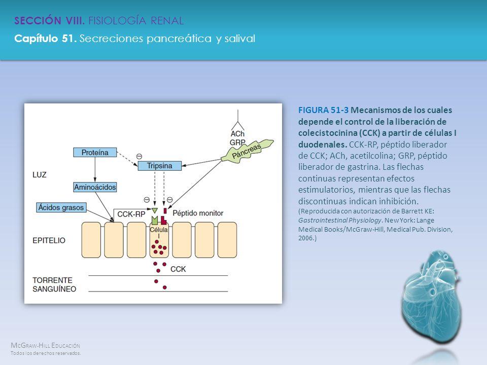 FIGURA 51-3 Mecanismos de los cuales depende el control de la liberación de colecistocinina (CCK) a partir de células I duodenales.