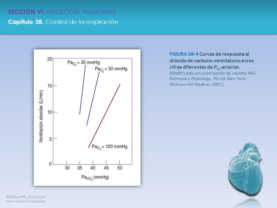 FIGURA 38-4 Curvas de respuesta al dióxido de carbono ventilatorio a tres cifras diferentes de PO2 arterial.