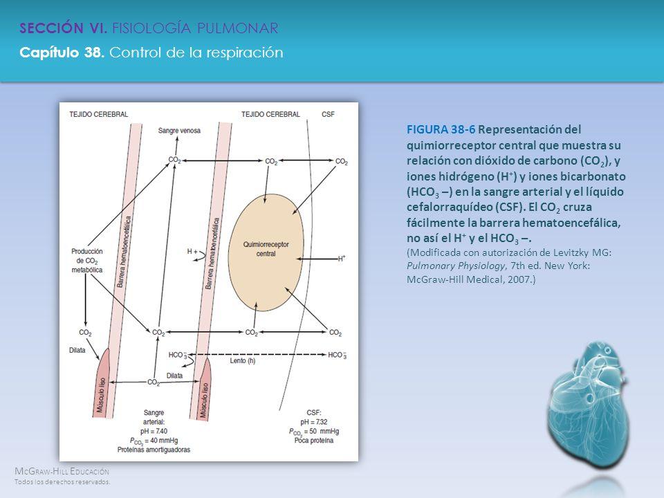 FIGURA 38-6 Representación del quimiorreceptor central que muestra su relación con dióxido de carbono (CO2), y iones hidrógeno (H+) y iones bicarbonato (HCO3 –) en la sangre arterial y el líquido cefalorraquídeo (CSF).