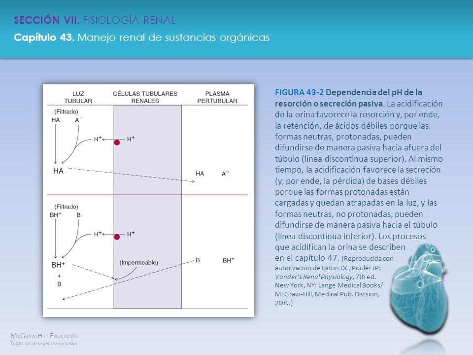 FIGURA 43-2 Dependencia del pH de la resorción o secreción pasiva