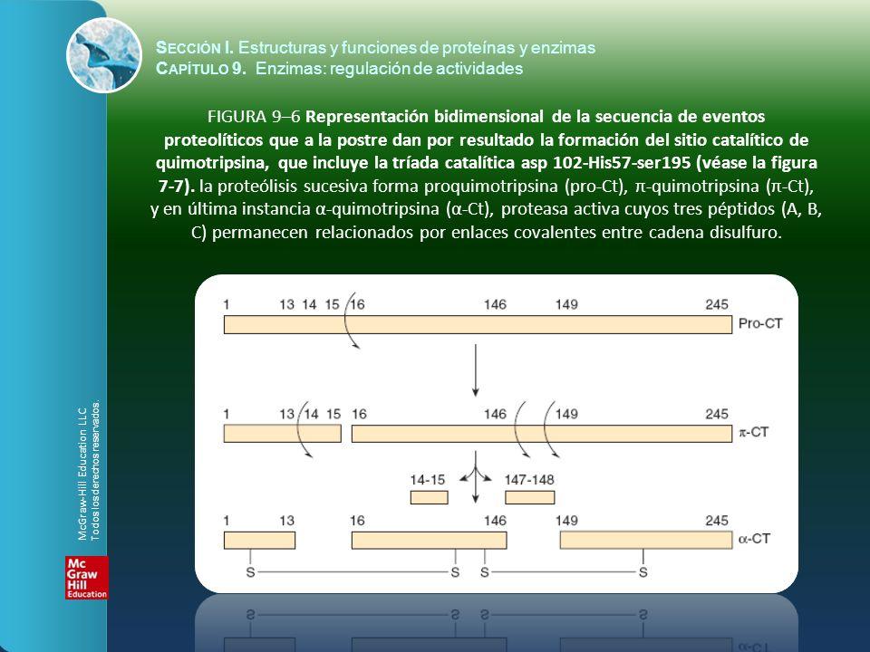 FIGURA 9–6 Representación bidimensional de la secuencia de eventos