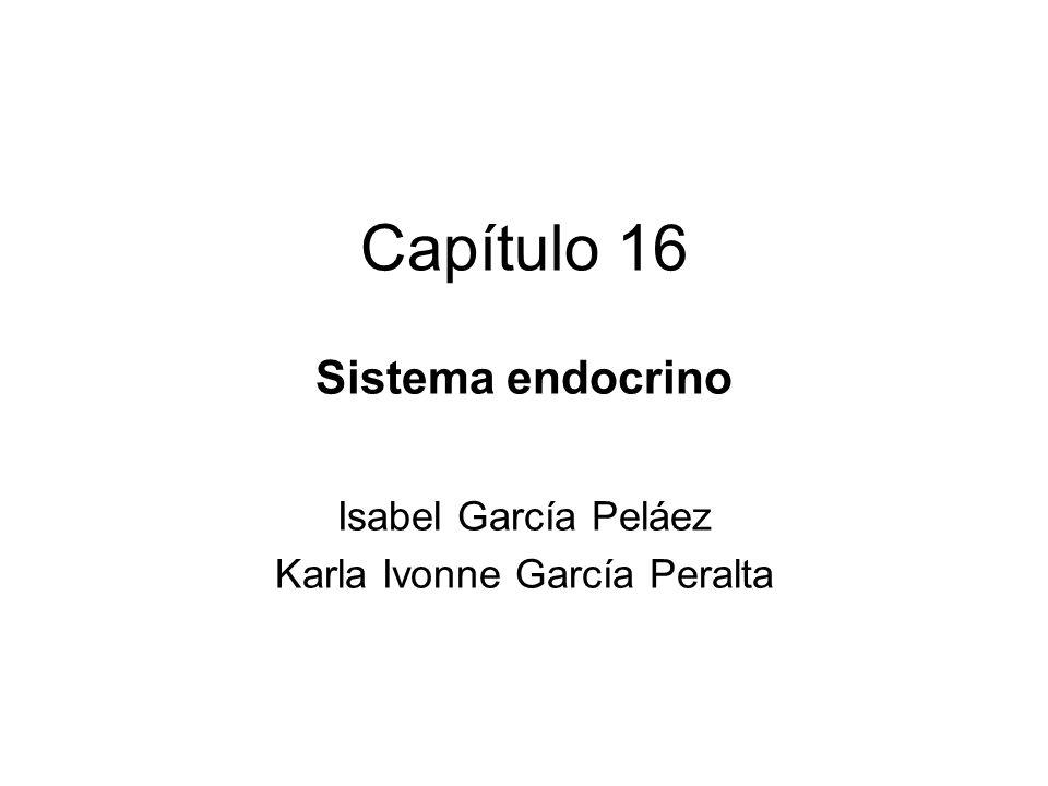 Sistema endocrino Isabel García Peláez Karla Ivonne García Peralta