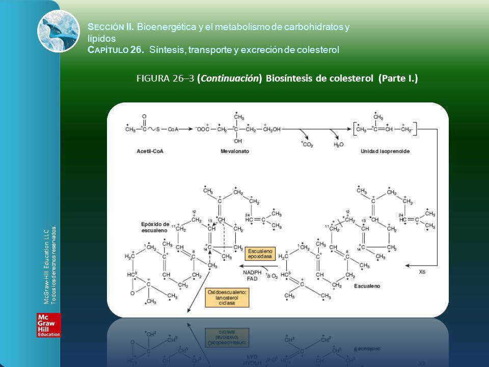 FIGURA 26–3 (Continuación) Biosíntesis de colesterol (Parte I.)