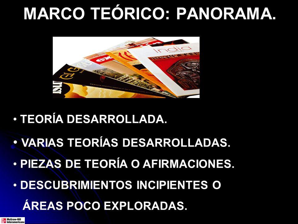 MARCO TEÓRICO: PANORAMA.