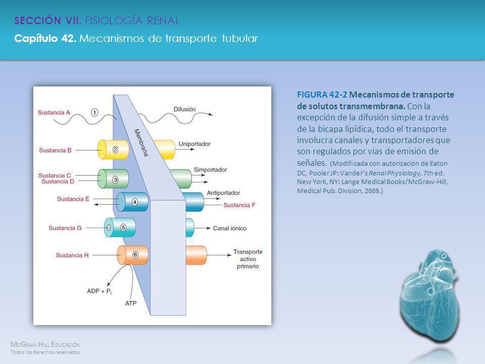 FIGURA 42-2 Mecanismos de transporte de solutos transmembrana