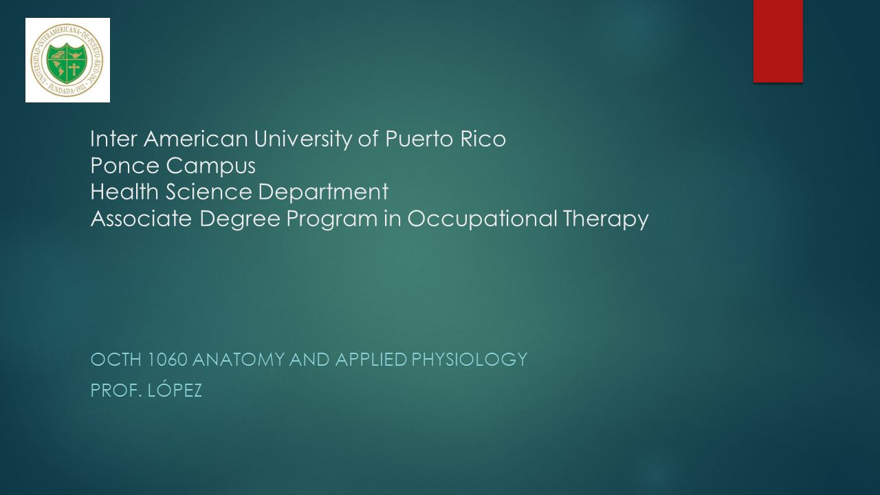 OCTH 1060 Anatomy and Applied Physiology Prof. López - ppt video ...