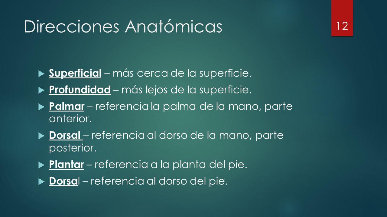 Direcciones Anatómicas