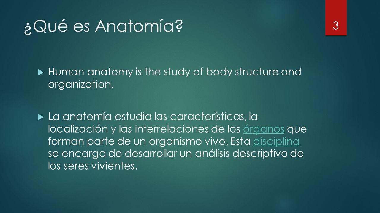 ¿Qué es Anatomía Human anatomy is the study of body structure and organization.