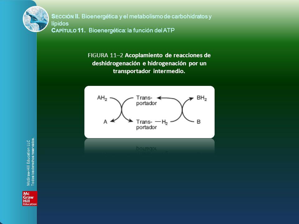 deshidrogenación e hidrogenación por un transportador intermedio.
