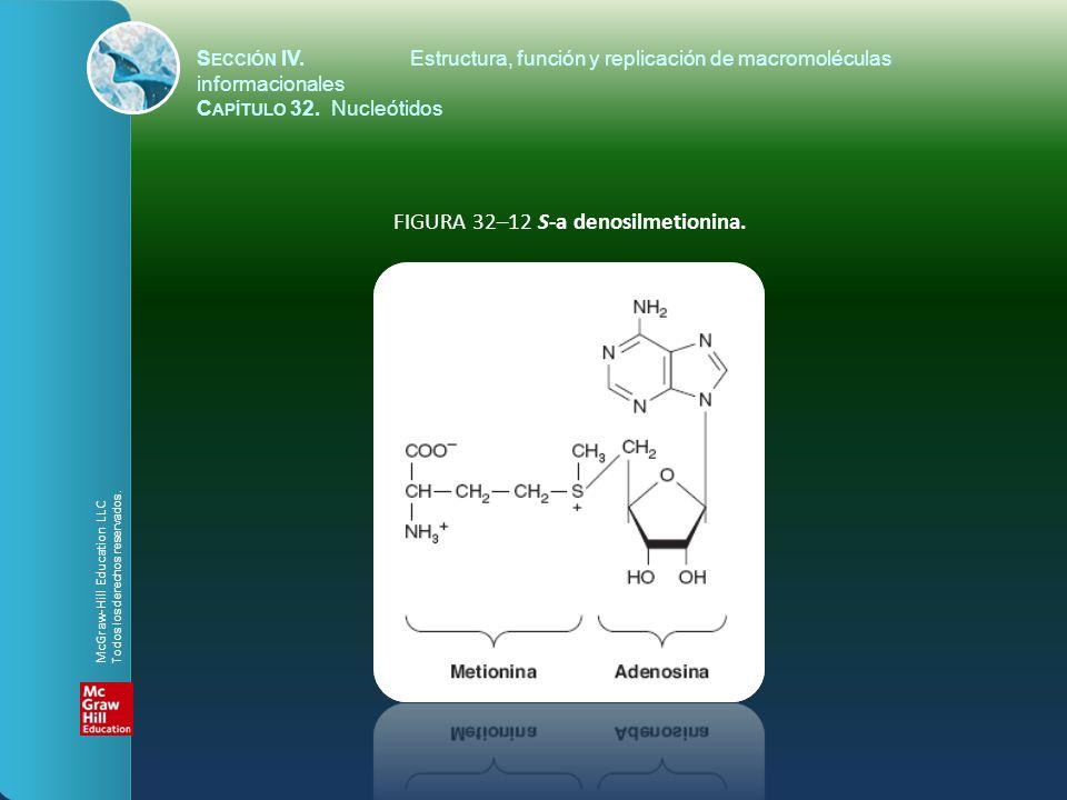 FIGURA 32–12 S-a denosilmetionina.