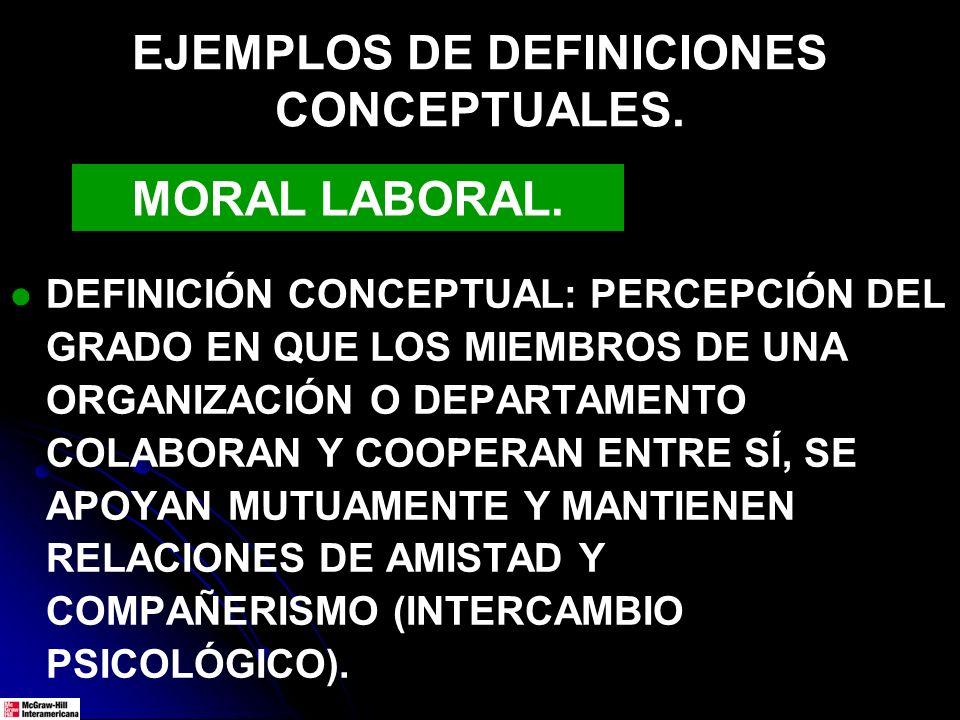 EJEMPLOS DE DEFINICIONES CONCEPTUALES.