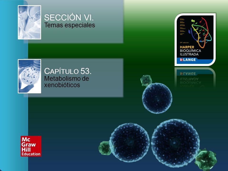 SECCIÓN VI. Temas especiales