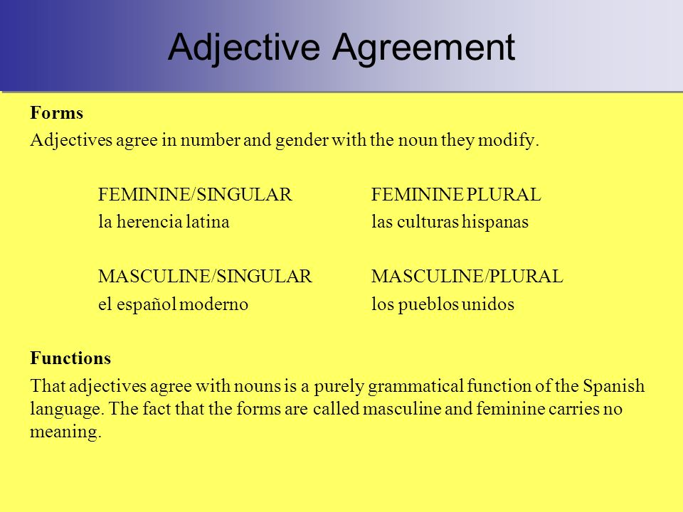 Adjective Agreement Forms