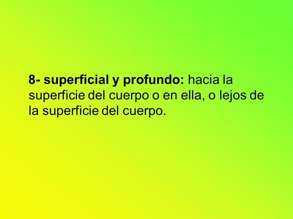 8- superficial y profundo: hacia la superficie del cuerpo o en ella, o lejos de la superficie del cuerpo.