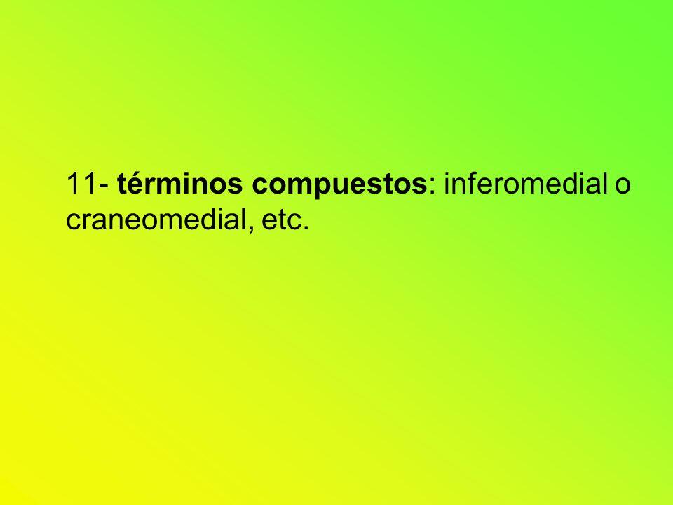 11- términos compuestos: inferomedial o craneomedial, etc.