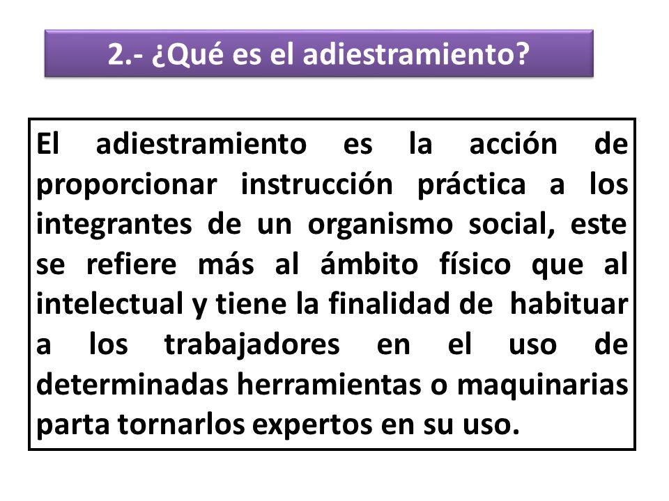 2.- ¿Qué es el adiestramiento