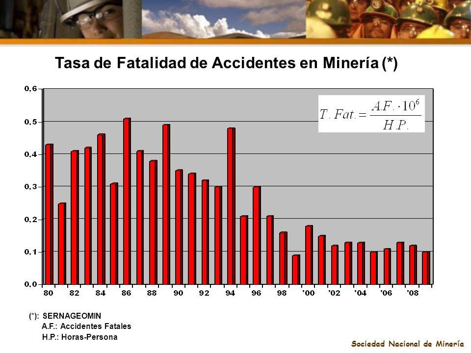 Sociedad Nacional de Minería