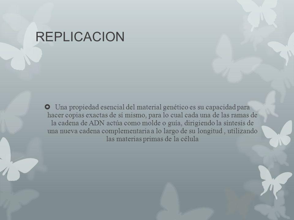 REPLICACION