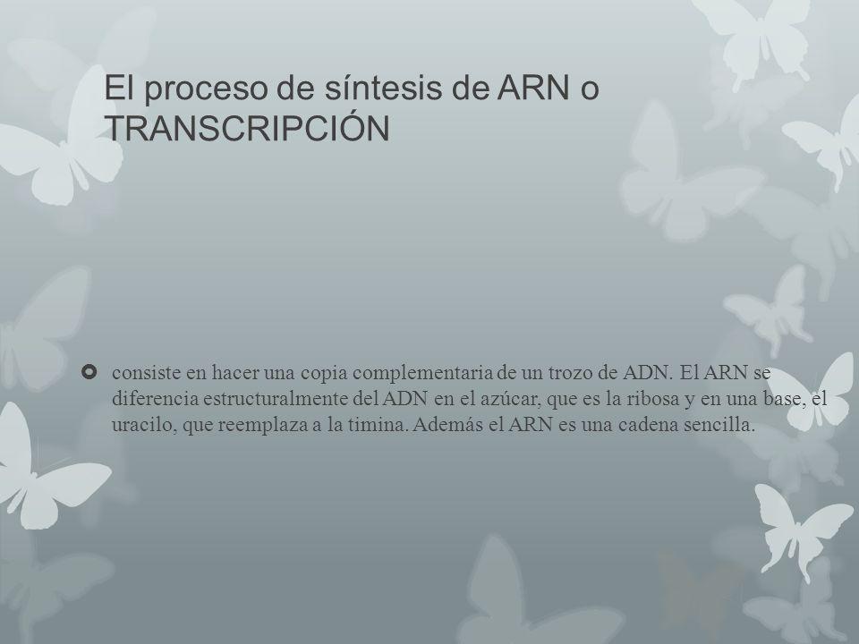 El proceso de síntesis de ARN o TRANSCRIPCIÓN