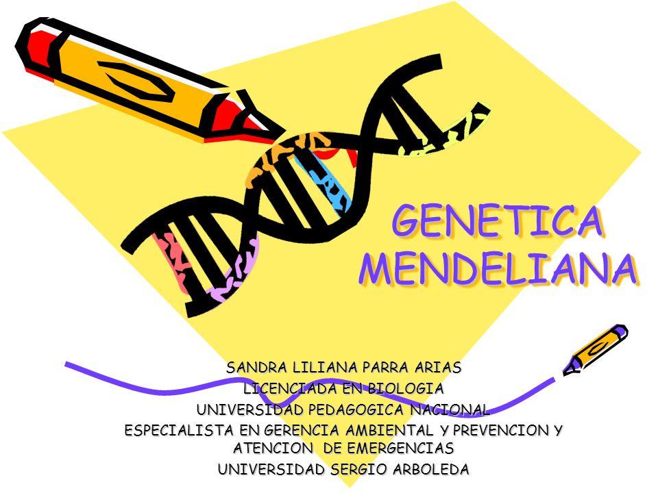 GENETICA MENDELIANA SANDRA LILIANA PARRA ARIAS LICENCIADA EN BIOLOGIA
