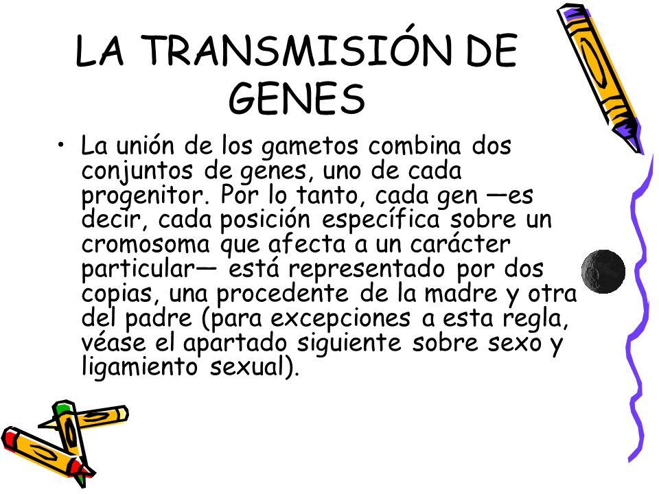 LA TRANSMISIÓN DE GENES