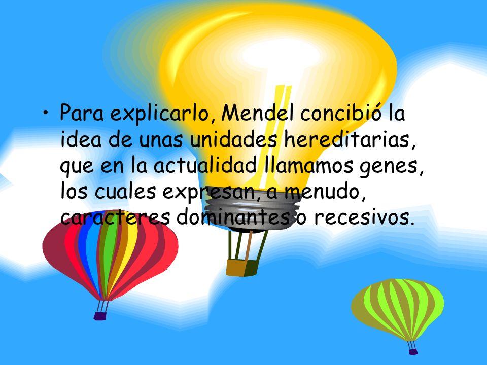 Para explicarlo, Mendel concibió la idea de unas unidades hereditarias, que en la actualidad llamamos genes, los cuales expresan, a menudo, caracteres dominantes o recesivos.